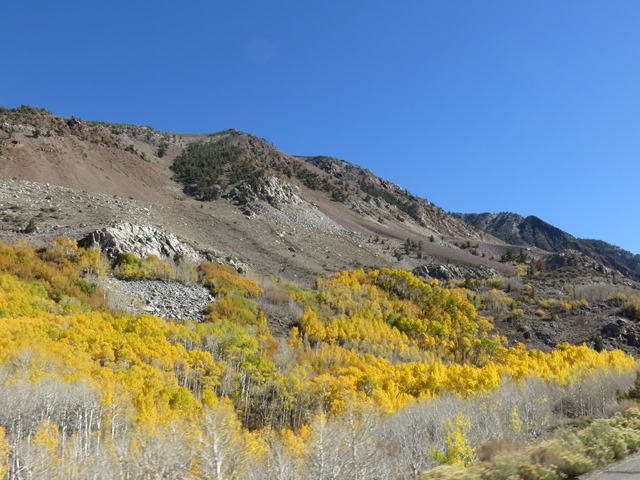 South Fork Bishop Creek Canyon
