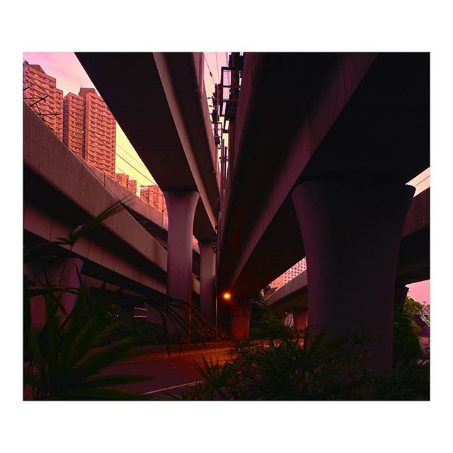the sun setting over Hong Kong cast a warm glow on this convergence of metro overpasses