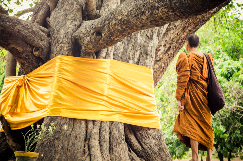 The Bodhi Tree is the most sacred site of the Mahabodhi Temple Complex. It was under this sacred fig tree that Buddha attained his enlightenment.