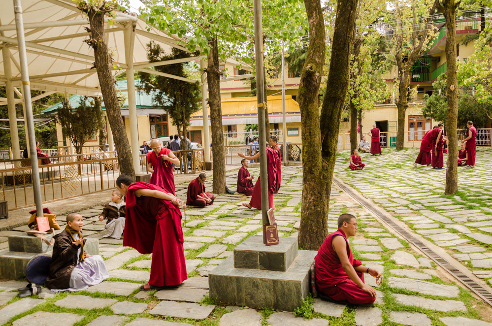 Monks gather in the courtyard of the Tsuglagkhang Complex for their heated debates.