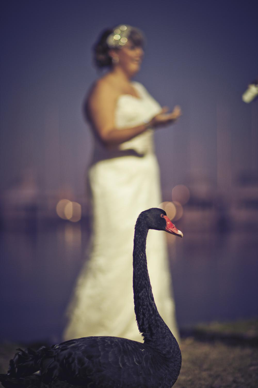 Sloane+Craig Wedding-9938-2-GRADED.jpg