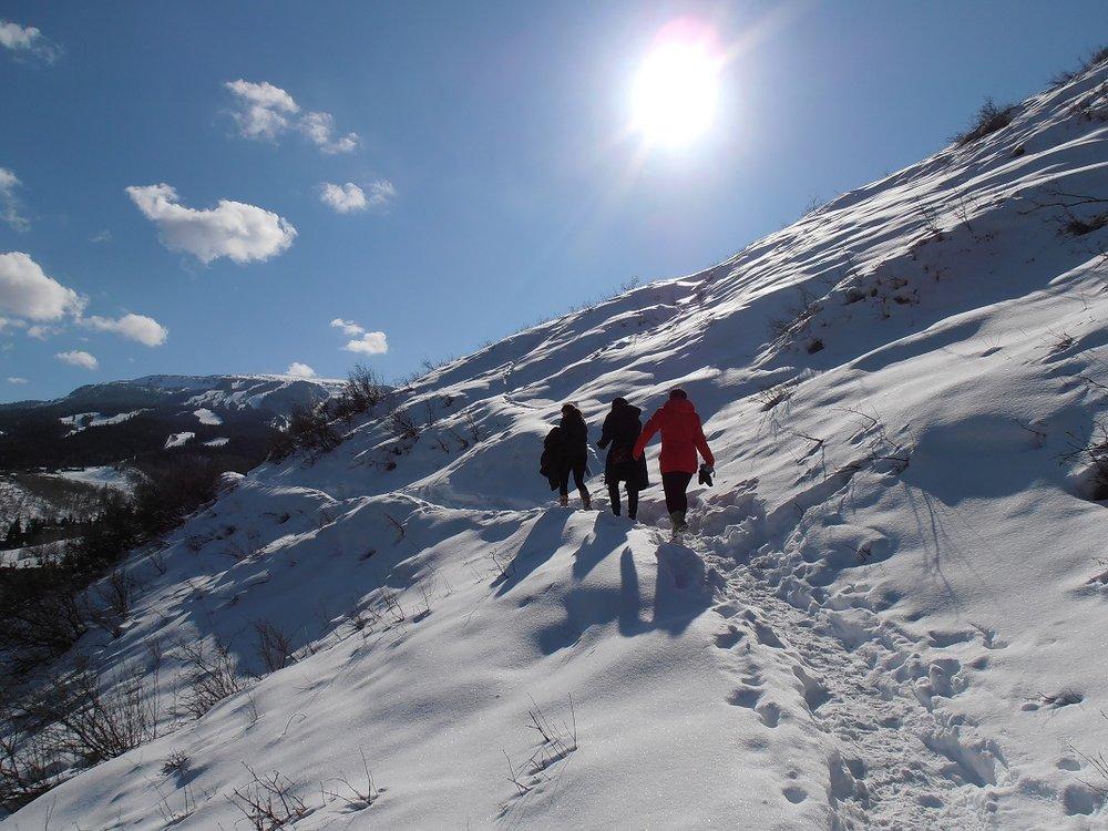 Artist hike above Snowmass Village
