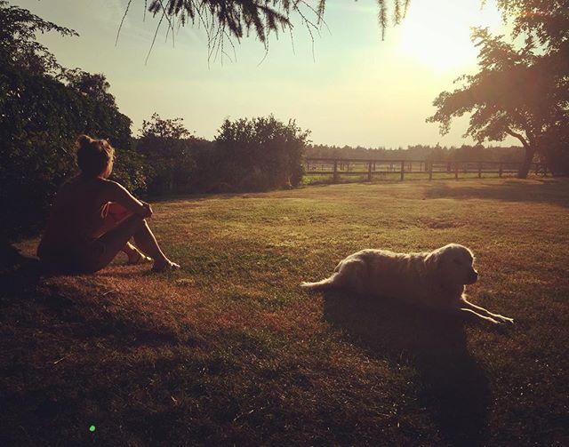 Summer vibes 🌱☀️💕🐾 #goldenretriever #friends #traveling #wanderlust #view #nature #inspiration #creativeminds 📸 @anneaafke 👌🏼💚