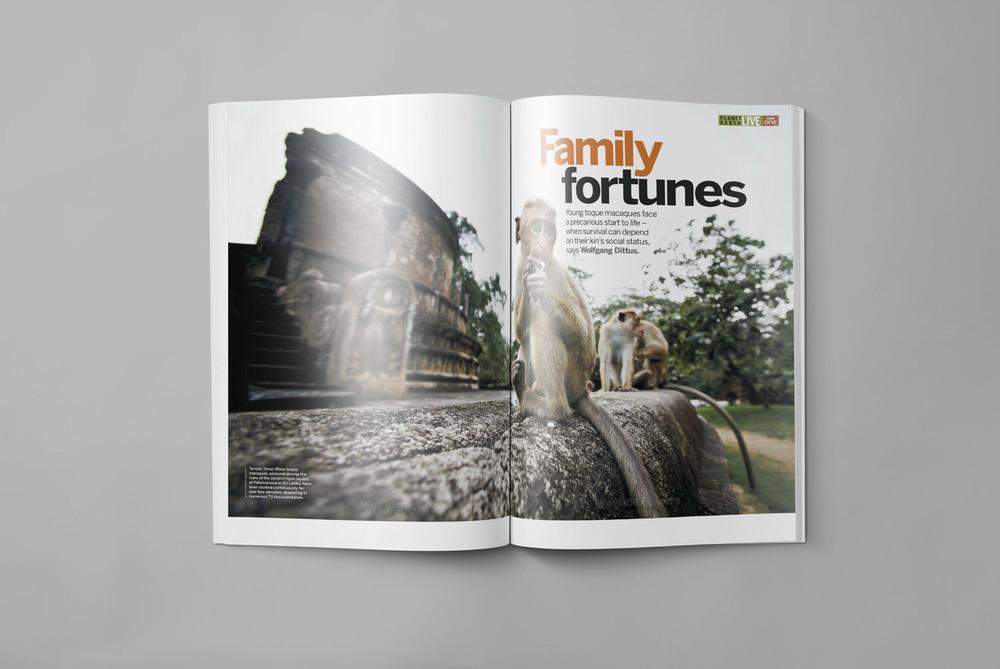 BBC-Wildlife--Magazine-DocumentaryPhotography-Get-it-Sorted-Barney-Wilczak.jpg