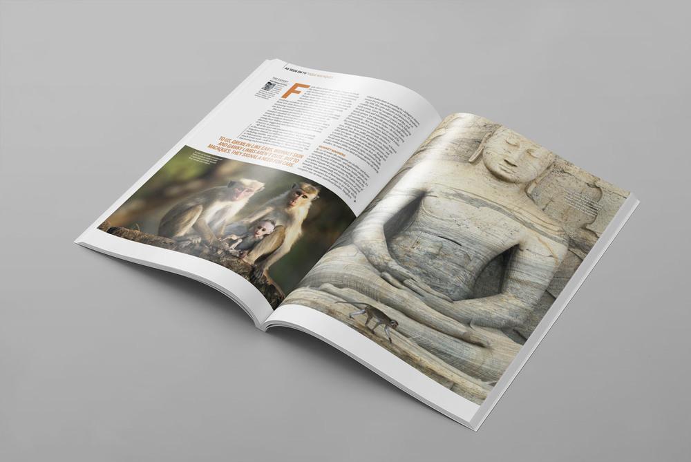 BBC-Wildlife-Magazine-Documentary-Photography-Magazine-Spread-Get-it-Sorted-Barney-Wilczak.jpg