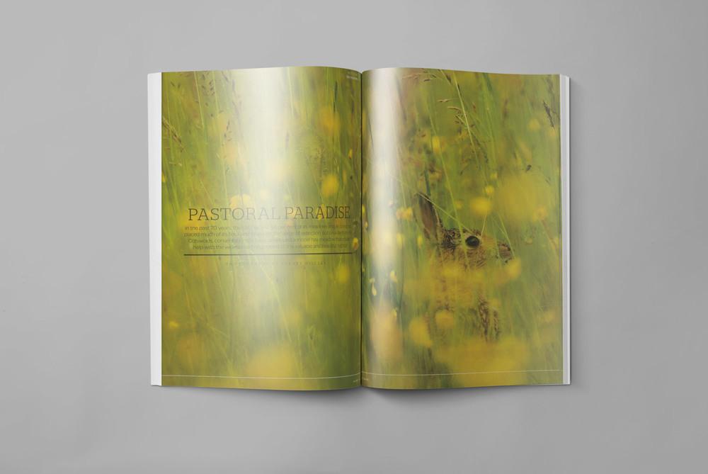 Geographical-Magazine-Documentary-Photography-Magazine-spread-Get-it-Sorted-Barney-Wilczak.jpg