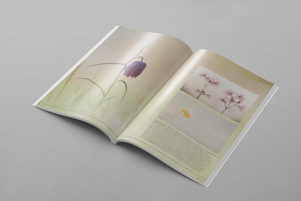 Geographical-Magazine-Documentary-Photography-Magazine-spread-Meadow-Get-it-Sorted-Barney-Wilczak.jpg