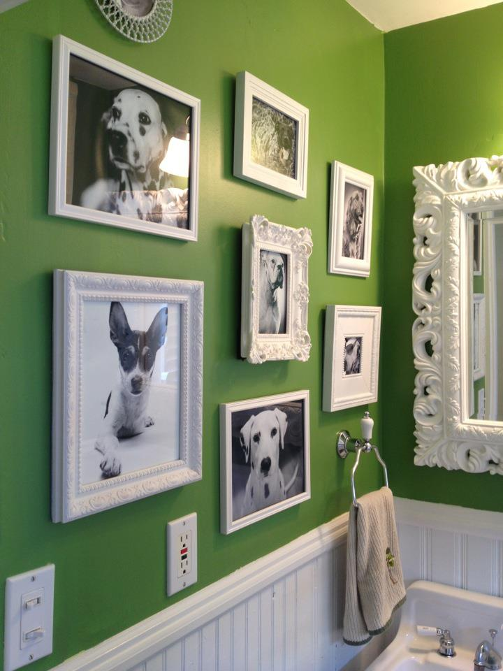 I posted this on my Facebook and people seem to dig it!  Figure I would put it on my blog too!  Ash and I decided to redo our powder room.  This included my wall of dogs!  I dug up a bunch of photos of dogs that I have photographed through the years.  I decided to make them black and white since the wall is um… VERY Green!  I think I am going to be rotating the images out as I get new shots.