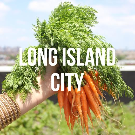 Rooftop farms, MOMA concerts, and schoolhouse eats [QNS]