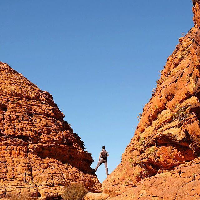 Today in the red desert ☀️🌵🧡 #KingsCanyon // @australia