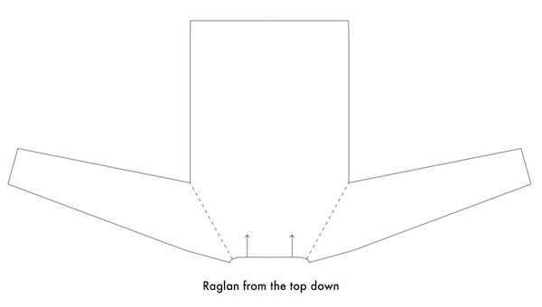 Raglan from top down.png