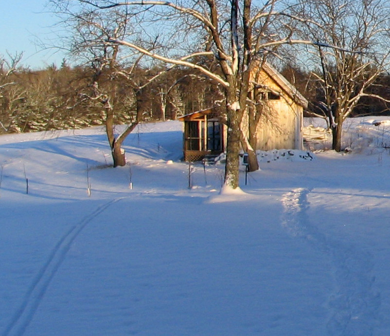My writing cabin, and daily winter commute.