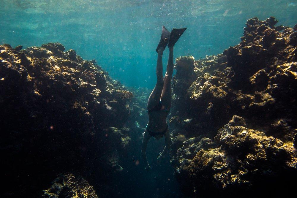 Namena Divers, Fiji