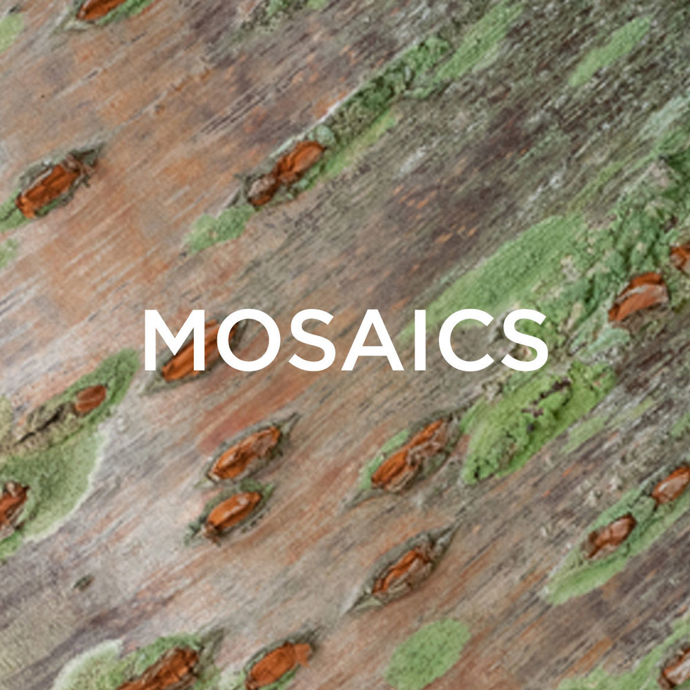 Mosaics-Block-revise.jpg