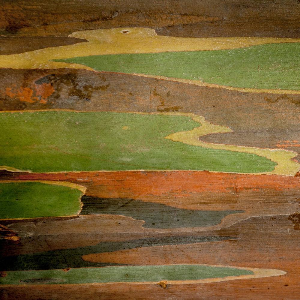 Rainbow Eucalyptus No. 12