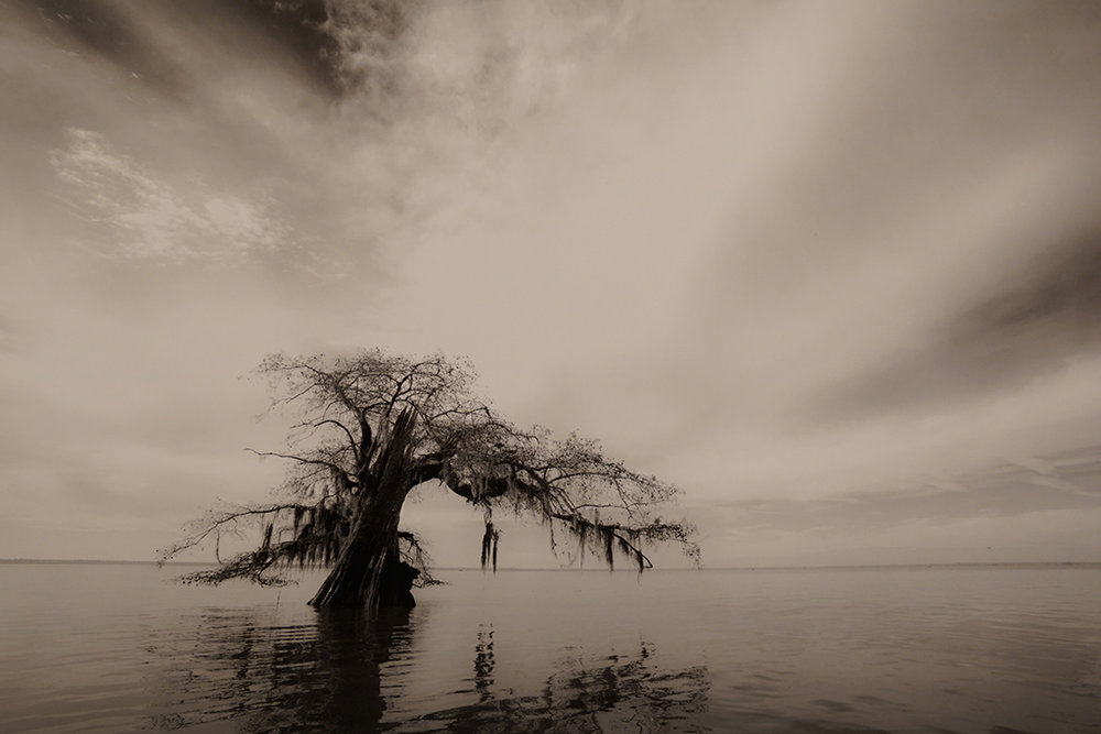 5-Old Soul of Atchafalaya-Mark Lagrange