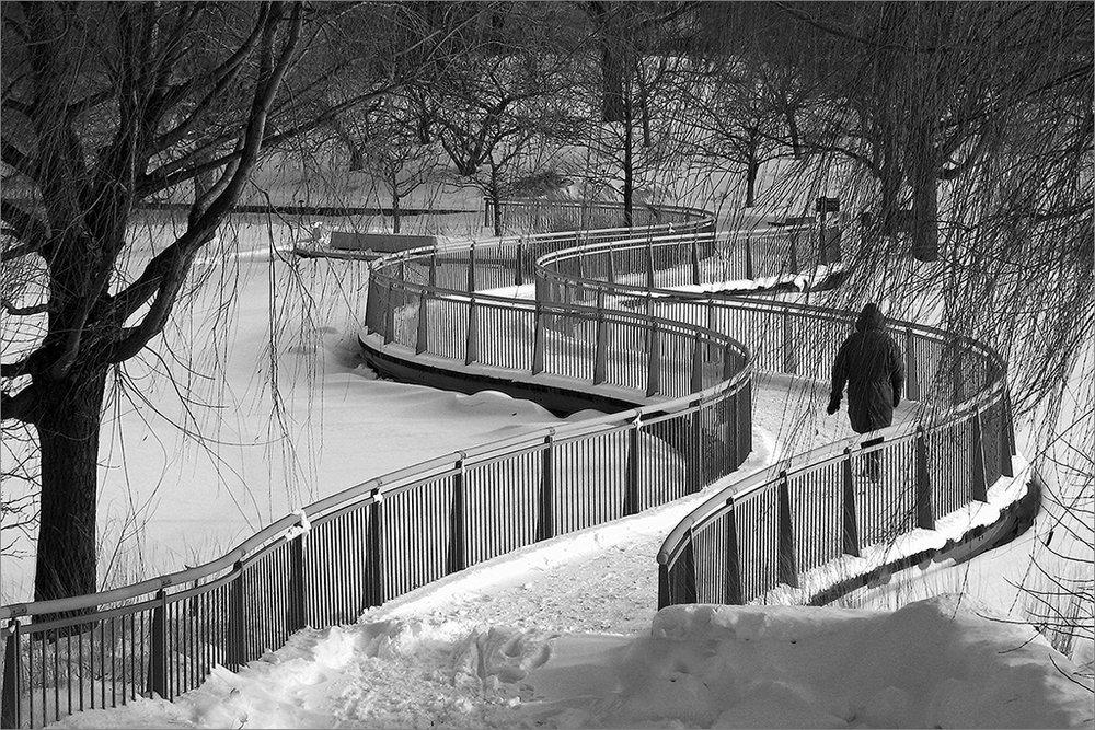 Enjoy Walking On The Snow