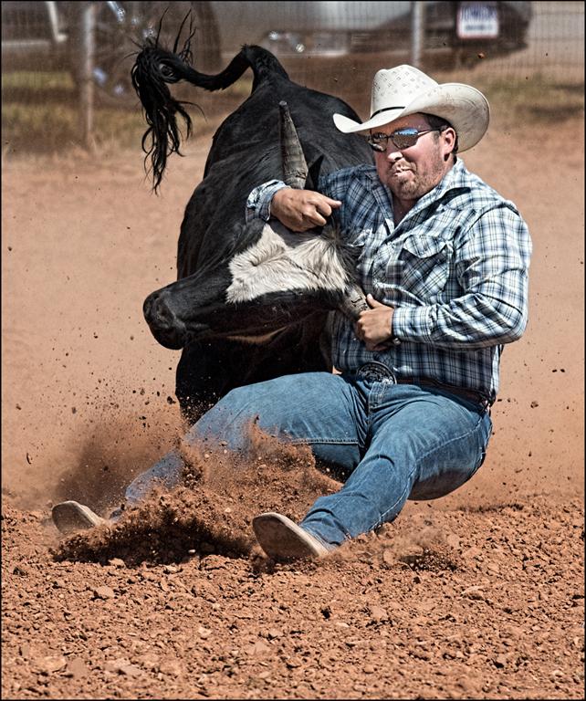 Bull vs Man, Carol McCreary, Oklahoma CC, 2nd Place