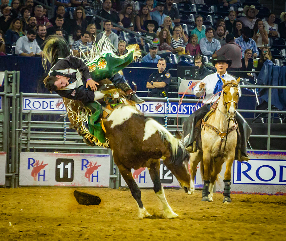 Bucked Off, Butch Spielman, Louisiana PS, 2nd HM