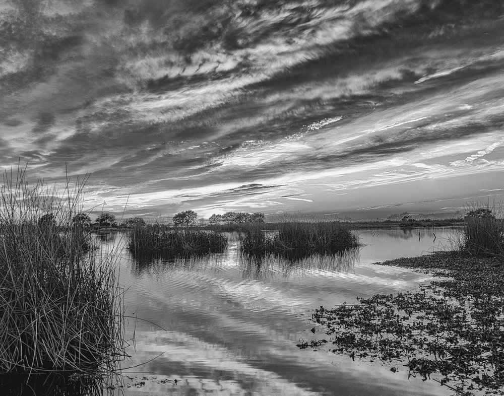 Fountainebleau Marsh and Sky, Tom Donlon, GNOCC, 2nd Place