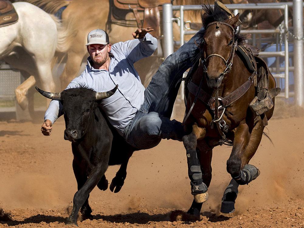 Grab Those Horns, J. D. McClung, Oklahoma CC, 1st