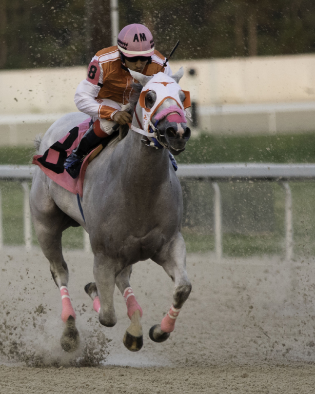 Run Baby Run, Anne Roberts, Beaumont CC, 3rd