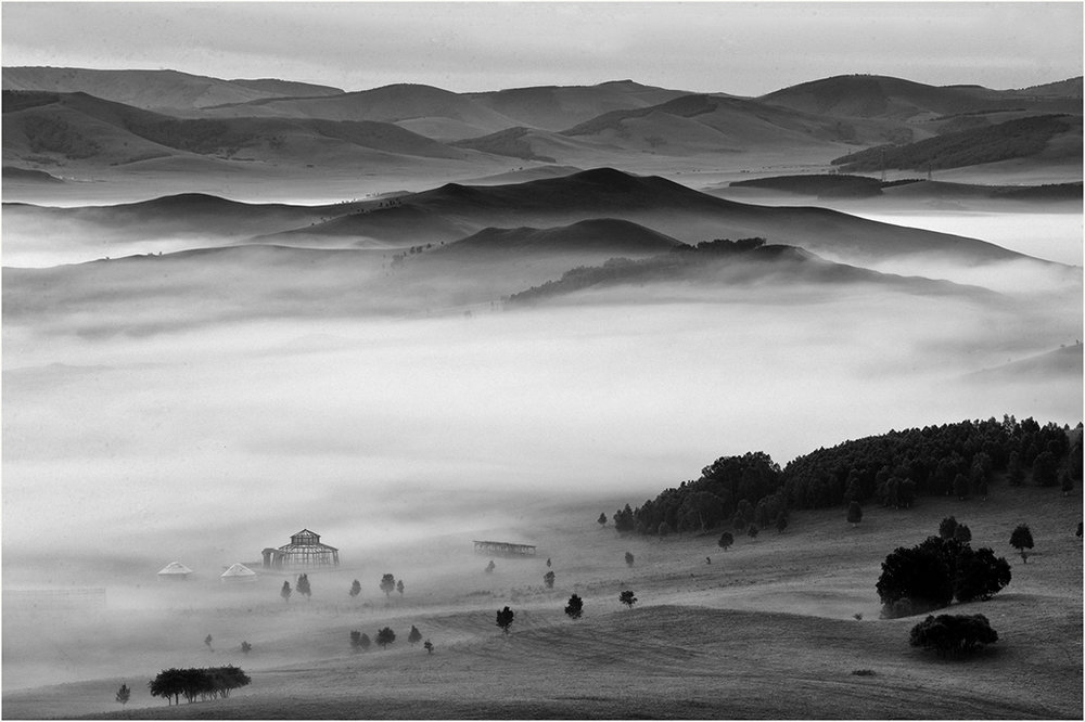 Morning Fog, Janet Chung, Houston PC, 3rd Place