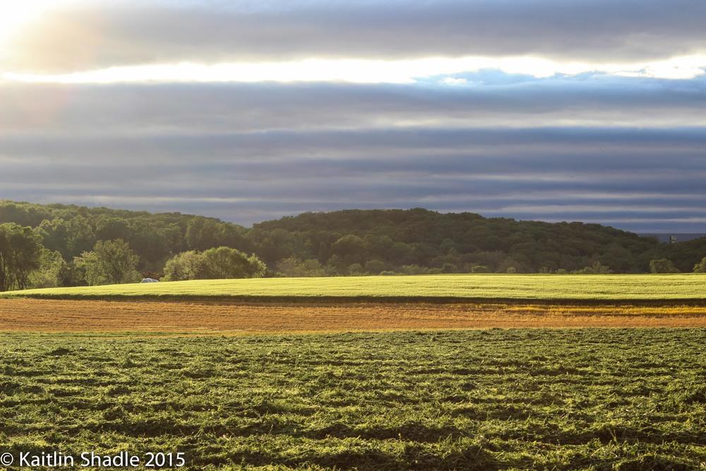 Holleywell Sunset