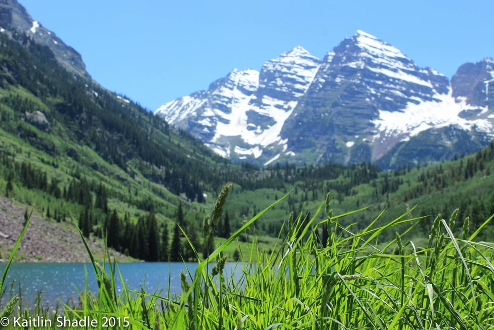 Grassy Perspective of the Maroon Bells