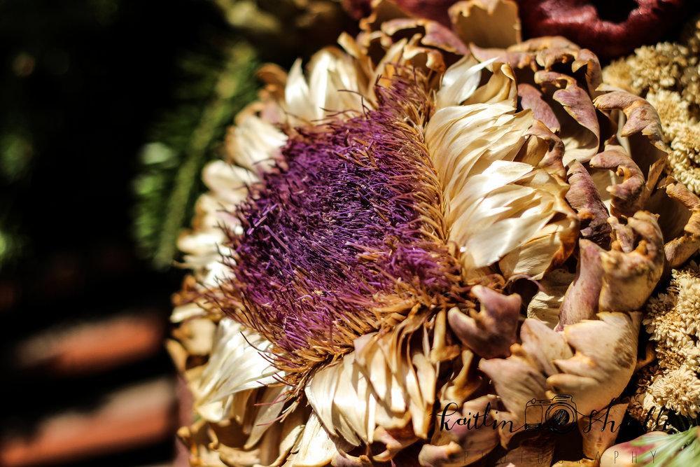 Burst of Dried Purple