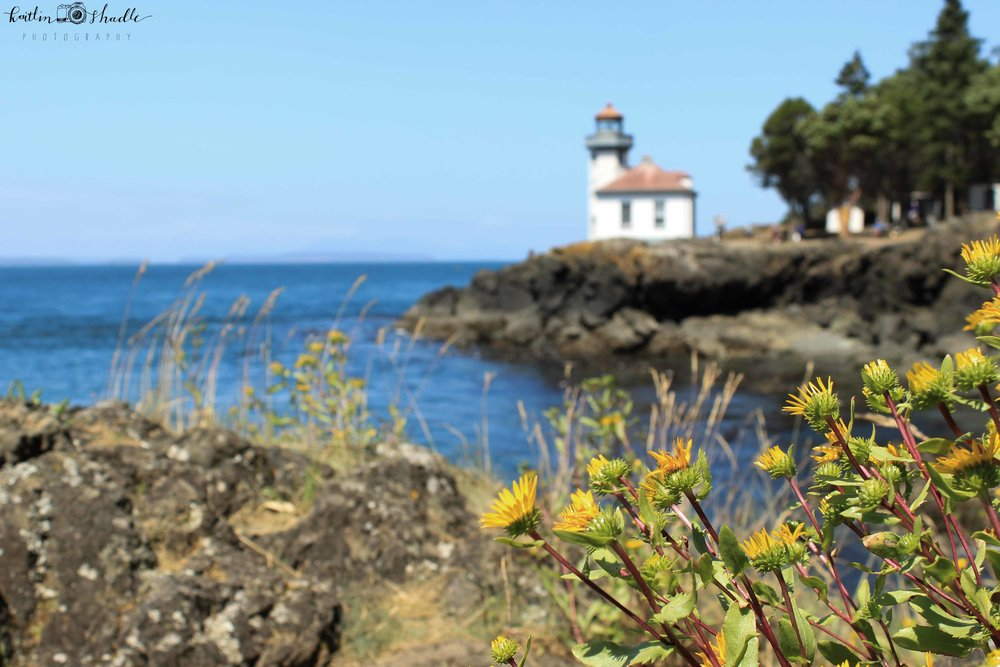 Flowers, Rocks, and a Lighthouse