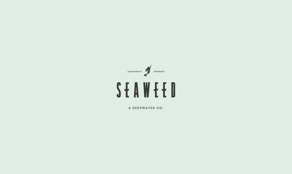 Seaweed_Portfolio-06.png
