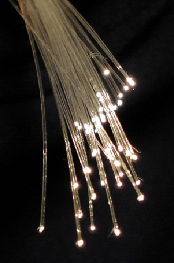 A bundle of optical fibers   Photo: Wikimedia Commons