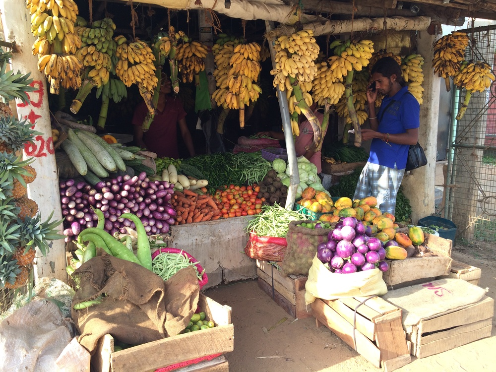 Kalpitiya vergetable market