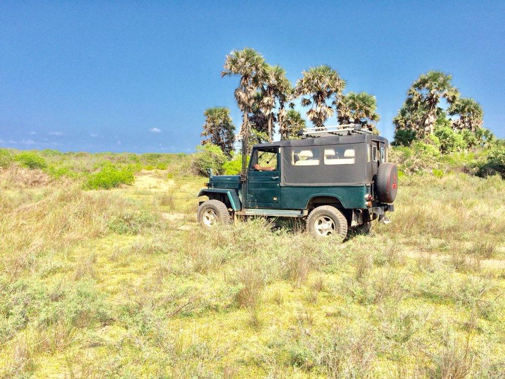 discover-kalpitiya-by-jeep-04 (1).jpg