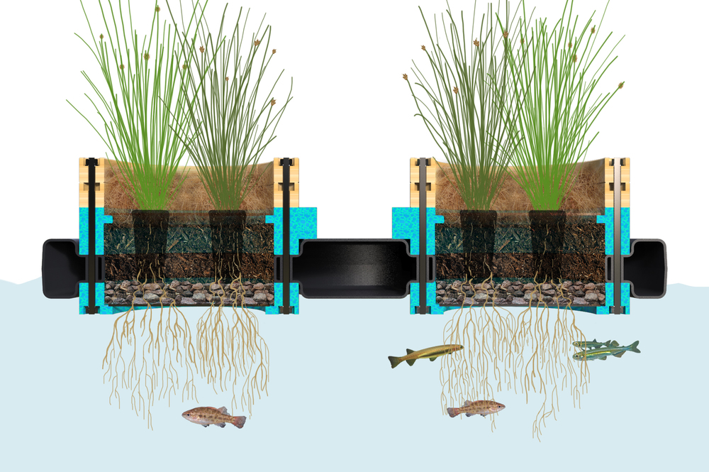 Micro Habitat