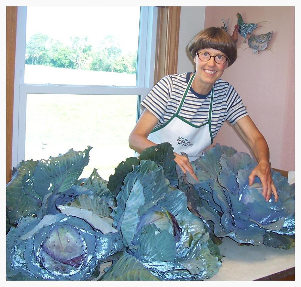 Beth getting ready to prepare freshly harvested cabbage from her garden.