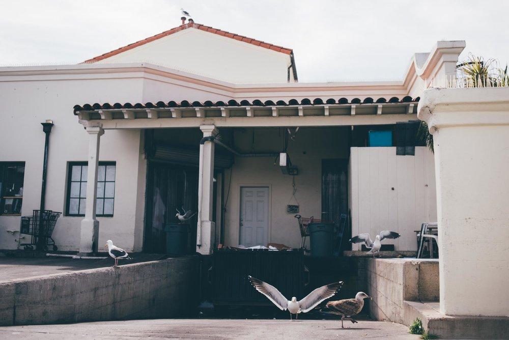 santa-barbara-california-usa-travel-photographer-sara-megan-14.jpg