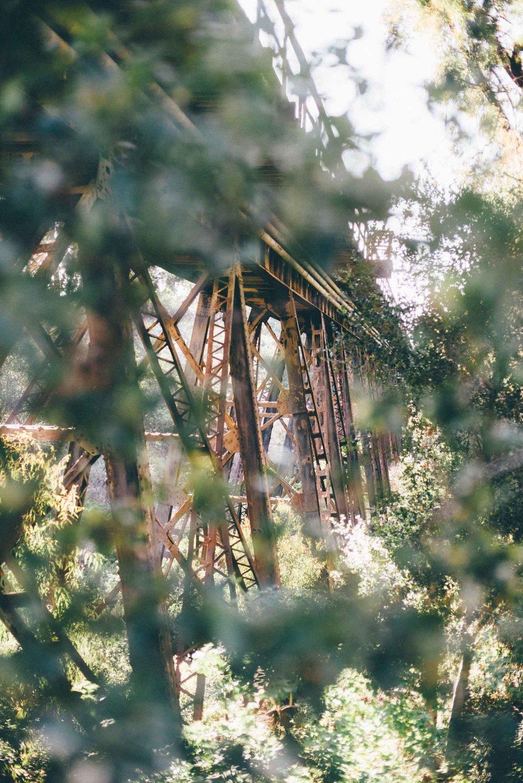 santa-barbara-california-usa-travel-photographer-sara-megan-32.jpg