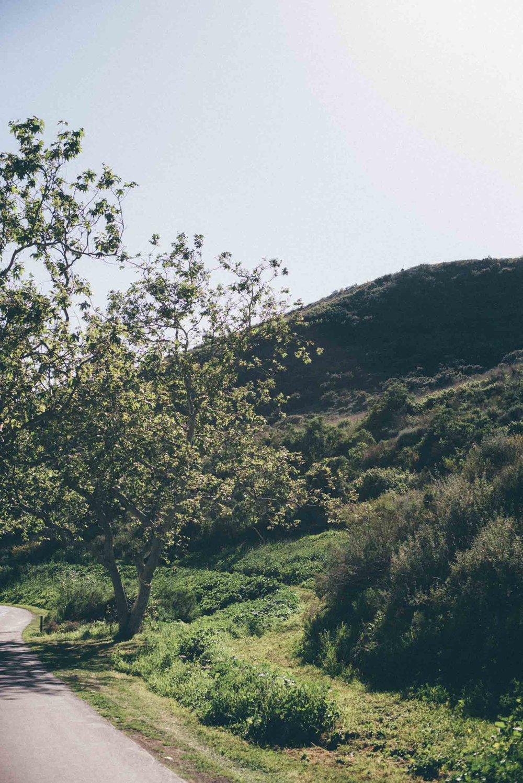 santa-barbara-california-usa-travel-photographer-sara-megan-42.jpg