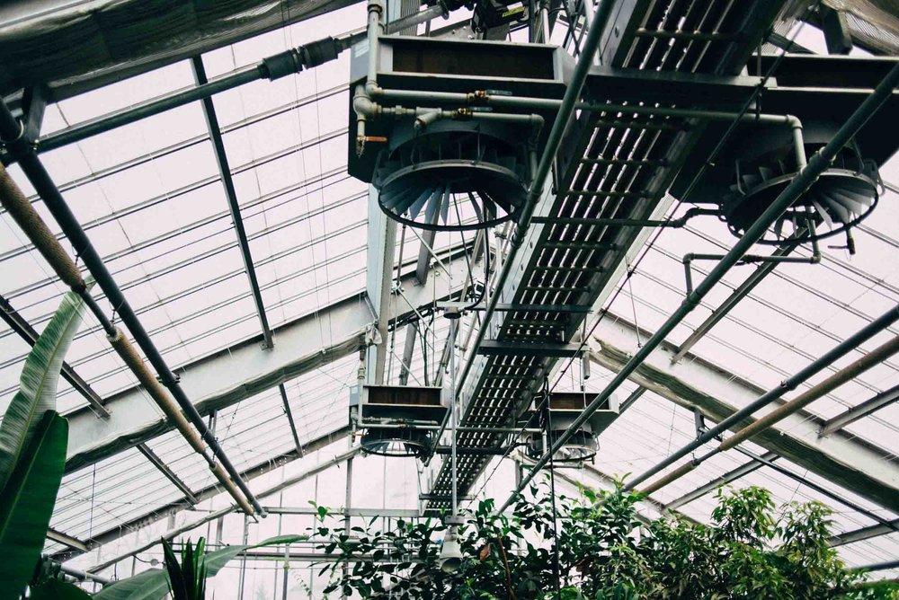 jardin-botanique-montreal-quebec-canada-botanical-gardens-sara-megan-3.jpg