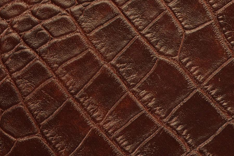 Dark Brown Alligator Leather