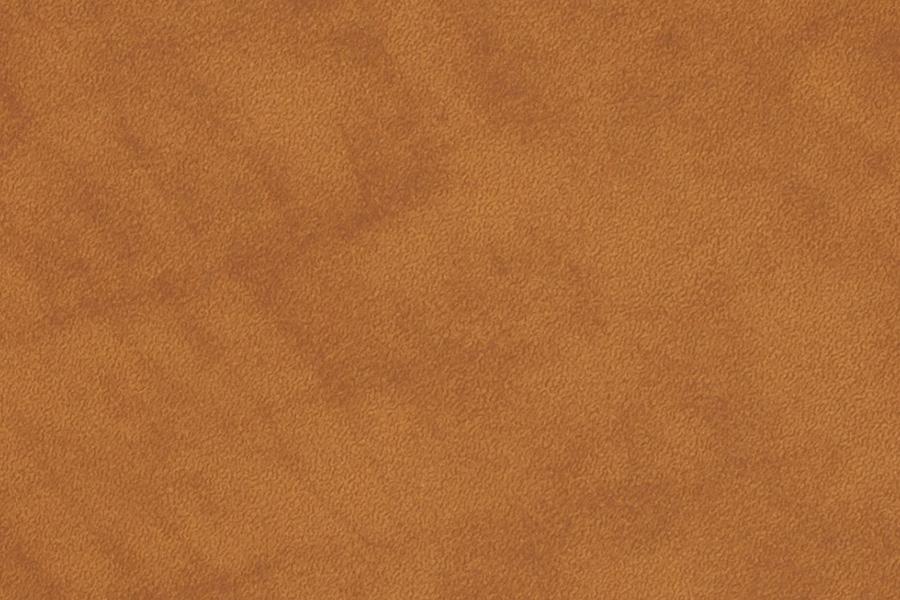 Vintage Camel Leather