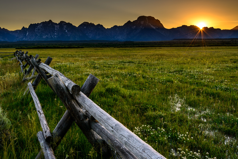 Fence to the Tetons