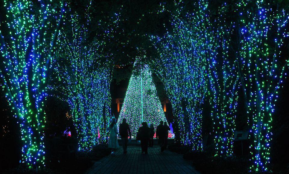 111712_holiday_lights_BH212.JPG