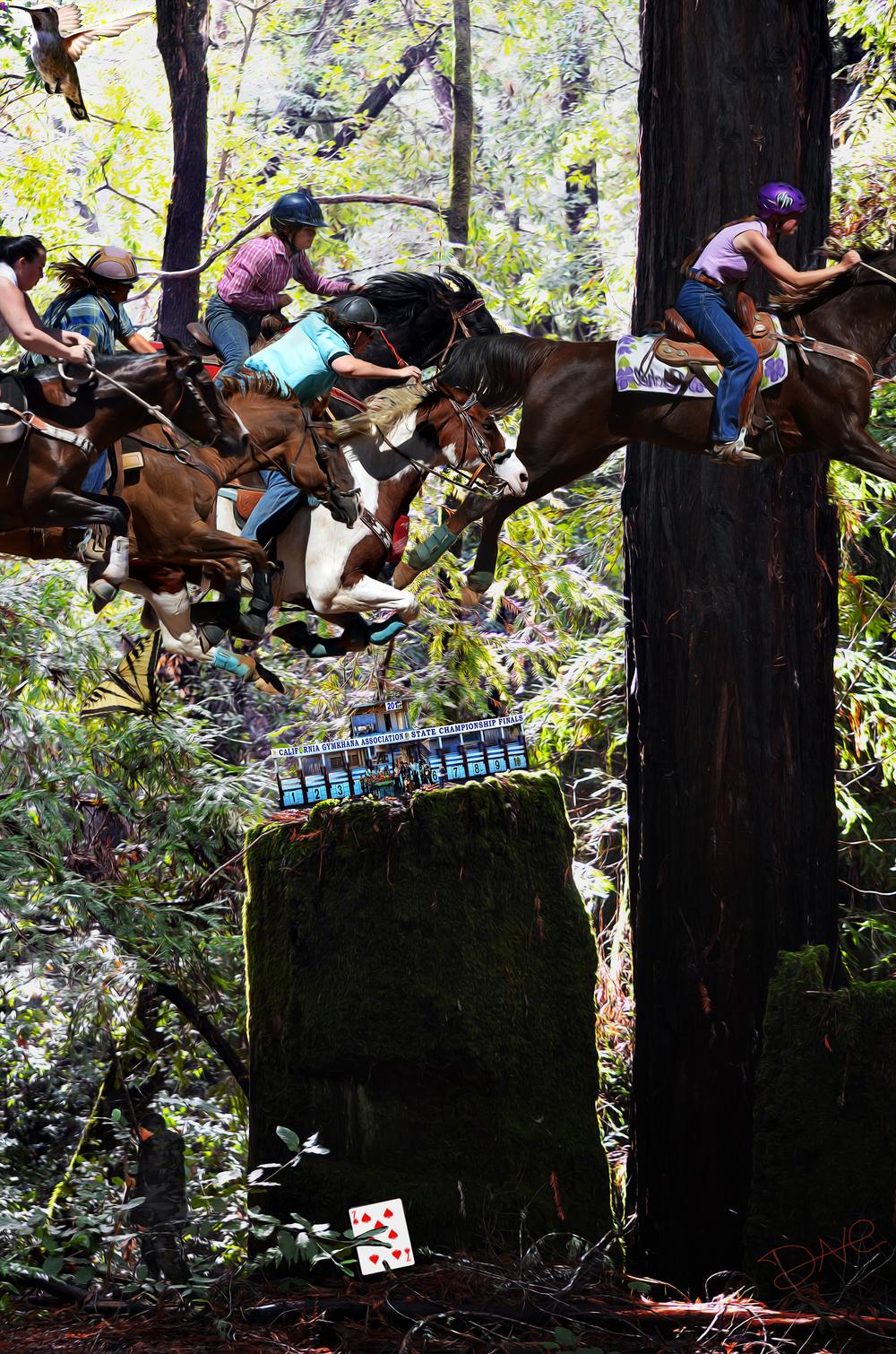 Bolado Forest Jump 1.jpg