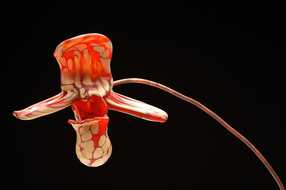 Client: Douglas Brown at Half Moon Bay Glass Art. http://hmbartglass.com/                                                                                                    Details: Mix Media Glass Orchid. Hot Sculpted. 2006