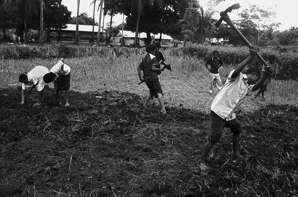 Milne Bay, PNG (2008)
