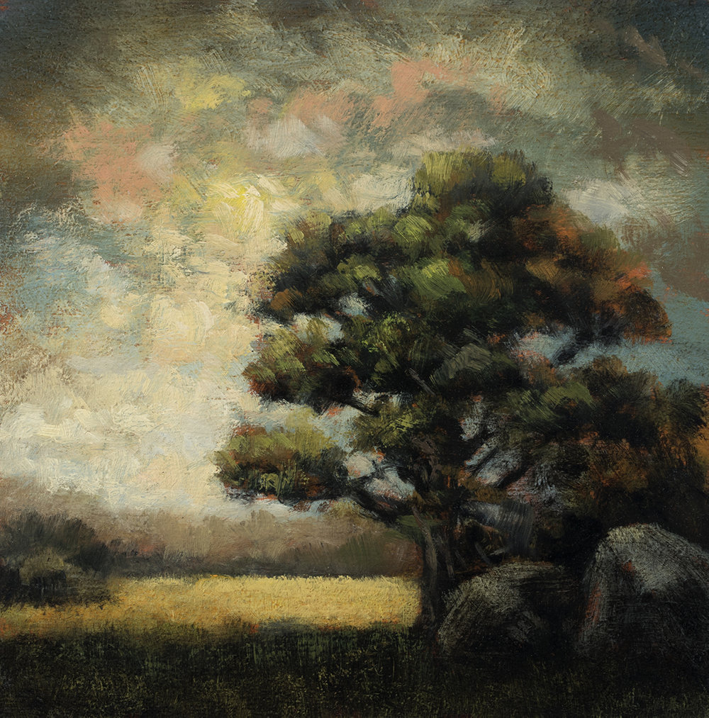 Rocky Field by M Francis McCarthy - 5x5 Oil on Wood Panel