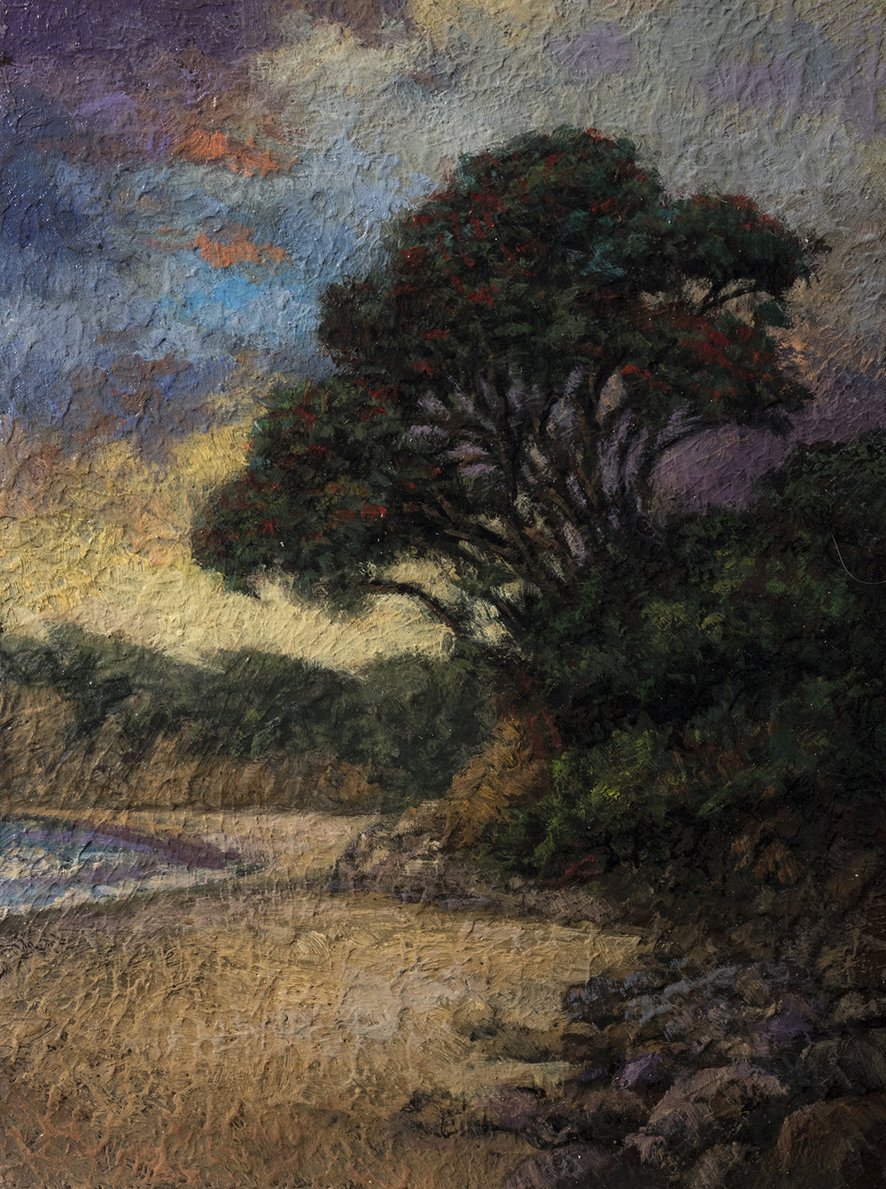 Tree by the Shore by M Francis McCarthy - 6x8 Oil on Wood Panel